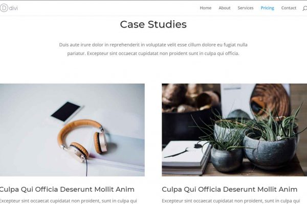 agency-case-studies