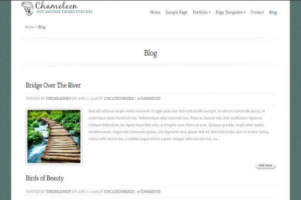 cham-blog