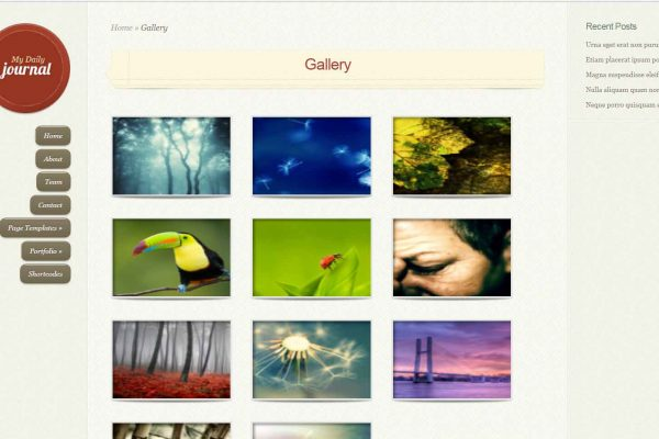 daily-gallery