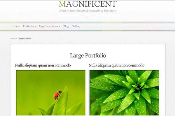 magnificient-portfolio